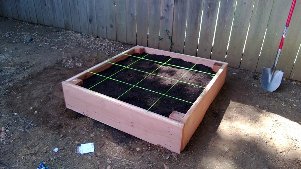 Square Foot Garden Picture